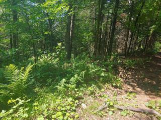 Lot for sale in Wentworth-Nord, Laurentides, Rue  Filiatrault, 13548667 - Centris.ca