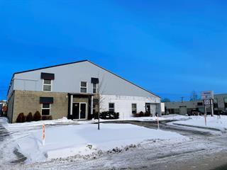 Industrial building for sale in Repentigny (Repentigny), Lanaudière, 87A - 87B, Rue  Laroche, 21973043 - Centris.ca