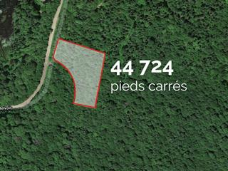 Terrain à vendre à Sainte-Agathe-des-Monts, Laurentides, Chemin du Lac-Pearl, 12570643 - Centris.ca