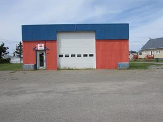 Bâtisse commerciale à vendre à Sainte-Anne-des-Monts, Gaspésie/Îles-de-la-Madeleine, 405, boulevard  Sainte-Anne Ouest, 25618000 - Centris.ca