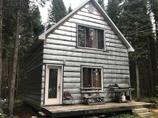 Maison à vendre à La Tuque, Mauricie, Lac  Brouillette, 13660190 - Centris.ca