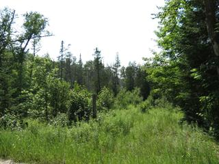 Lot for sale in Rivière-Rouge, Laurentides, Chemin du 5e-Rang Sud, 9734258 - Centris.ca