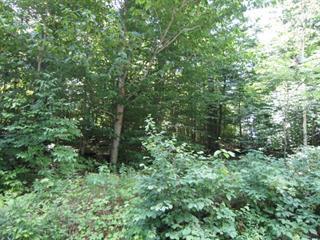 Lot for sale in Val-des-Monts, Outaouais, 44, Chemin de la Symphonie, 14031791 - Centris.ca