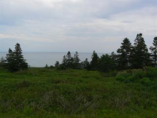 Terrain à vendre à Percé, Gaspésie/Îles-de-la-Madeleine, Route  132 Ouest, 23090642 - Centris.ca
