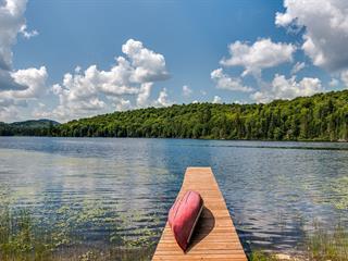 Maison à vendre à Ivry-sur-le-Lac, Laurentides, 310, Chemin du Lac-Manitou Sud, 9688446 - Centris.ca