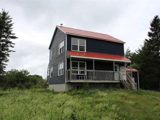 Maison à vendre à La Trinité-des-Monts, Bas-Saint-Laurent, 49, Chemin du Cenellier Est, 23836118 - Centris.ca