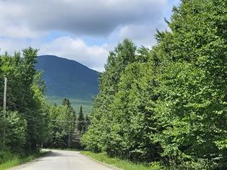 Terrain à vendre à Val-Racine, Estrie, Rang des Haricots, 13369865 - Centris.ca