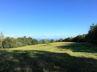 Terre à vendre à Les Éboulements, Capitale-Nationale, Rang  Saint-Antoine, 22113522 - Centris.ca