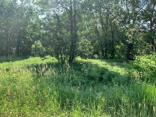 Lot for sale in Château-Richer, Capitale-Nationale, boulevard  Sainte-Anne, 12317205 - Centris.ca