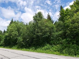 Terrain à vendre à Val-Racine, Estrie, Route  Chesham, 27098011 - Centris.ca