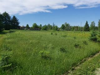 Terrain à vendre à Weedon, Estrie, 433, Rue  Roy Sud, 16467967 - Centris.ca