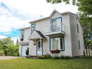 House for sale in Saint-Ambroise-de-Kildare, Lanaudière, 205, Rue  Lafrenière, 15007523 - Centris.ca