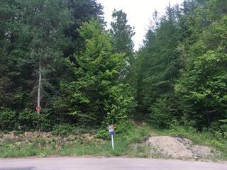 Terre à vendre à Rawdon, Lanaudière, Rue des Cascades, 21297434 - Centris.ca