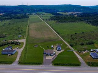 Maison à vendre à Cap-Chat, Gaspésie/Îles-de-la-Madeleine, 409, Rue  Notre-Dame Ouest, 26376099 - Centris.ca
