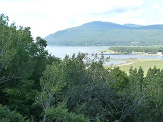 Lot for sale in Baie-Saint-Paul, Capitale-Nationale, 173, Chemin du Cap-aux-Rets, 18057880 - Centris.ca