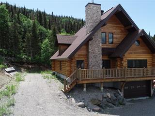 Maison à vendre à Saint-David-de-Falardeau, Saguenay/Lac-Saint-Jean, 220, Rue de Banff, 26972974 - Centris.ca