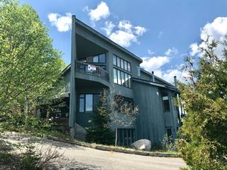 Condominium house for sale in Baie-Saint-Paul, Capitale-Nationale, 267, Rang  Saint-Antoine Nord, apt. 1, 16982822 - Centris.ca