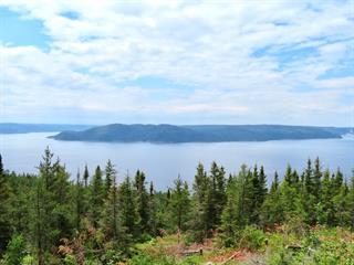 Terre à vendre à Sainte-Rose-du-Nord, Saguenay/Lac-Saint-Jean, Chemin du Lac-Neil, 20534791 - Centris.ca