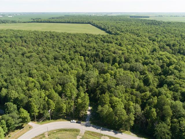 Land for sale in Saint-Marcel-de-Richelieu, Montérégie, 4e Rang Sud, 10036020 - Centris.ca