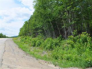 Lot for sale in Baie-Saint-Paul, Capitale-Nationale, Rang de Saint-Placide Sud, 20358275 - Centris.ca