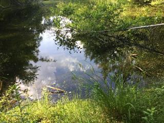 Terre à vendre à Lac-Brome, Montérégie, 67A, Chemin  Doucet, 21183707 - Centris.ca