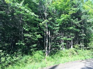 Terrain à vendre à Saint-Adolphe-d'Howard, Laurentides, Chemin  Pioneer, 26041126 - Centris.ca