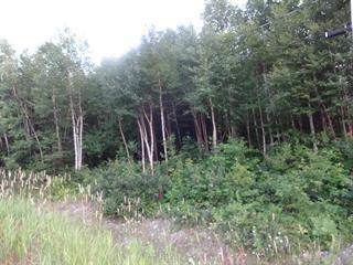 Terrain à vendre à Barraute, Abitibi-Témiscamingue, 37, Chemin du Mont-Vidéo, 13349809 - Centris.ca