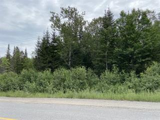 Terrain à vendre à Larouche, Saguenay/Lac-Saint-Jean, 740, Route des Fondateurs, 20609763 - Centris.ca