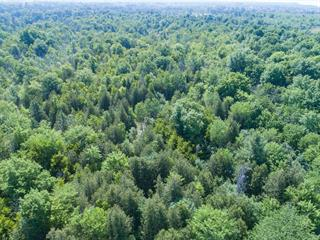 Lot for sale in Gatineau (Aylmer), Outaouais, Chemin  Pink, 11101455 - Centris.ca