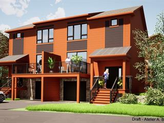 House for sale in Bromont, Montérégie, 35, Avenue de l'Hôtel-de-Ville, 25859750 - Centris.ca
