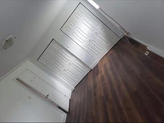 Maison à louer à Les Coteaux, Montérégie, 84, Rue des Bouleaux, 21403491 - Centris.ca