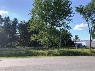 Terrain à vendre à Saint-Pie, Montérégie, Rue  Saint-Pierre, 19313064 - Centris.ca