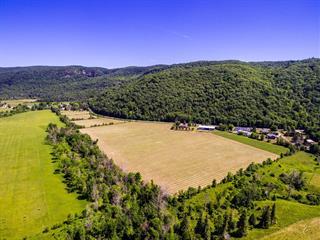 Hobby farm for sale in Pontiac, Outaouais, 1829, Chemin de la Montagne, 16031861 - Centris.ca