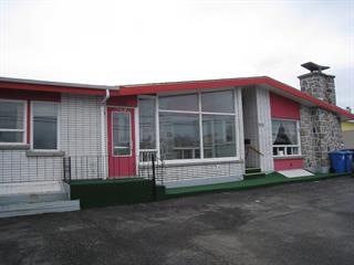 Income properties for sale in Matane, Bas-Saint-Laurent, 268 - 272, Avenue  Saint-Rédempteur, 11547146 - Centris.ca