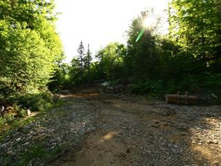 Lot for sale in Wentworth-Nord, Laurentides, Chemin des Montfortains, 11891109 - Centris.ca