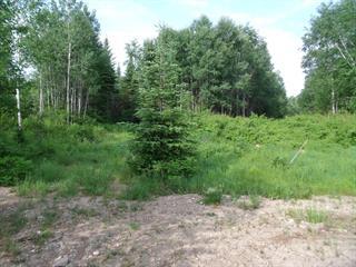 Land for sale in Saint-Michel-des-Saints, Lanaudière, Chemin du Lac-à-la-Truite, 23524342 - Centris.ca