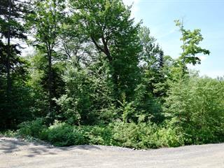 Lot for sale in Saint-Adolphe-d'Howard, Laurentides, Chemin  Ora, 22953268 - Centris.ca