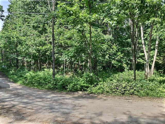 Terrain à vendre à Sainte-Christine-d'Auvergne, Capitale-Nationale, Chemin du Lac-des-Fonds, 20225165 - Centris.ca