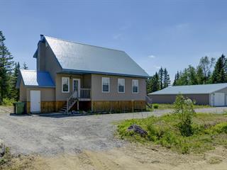 Maison à vendre à Saint-Raymond, Capitale-Nationale, 164, Rue  Gosselin, 25238324 - Centris.ca