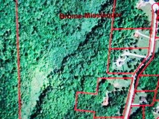Lot for sale in Saint-Armand, Montérégie, Chemin  Pelletier Sud, 26875534 - Centris.ca