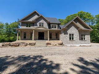 Maison à vendre à Sainte-Marthe, Montérégie, 386Z, Chemin  Saint-Henri, 10604324 - Centris.ca