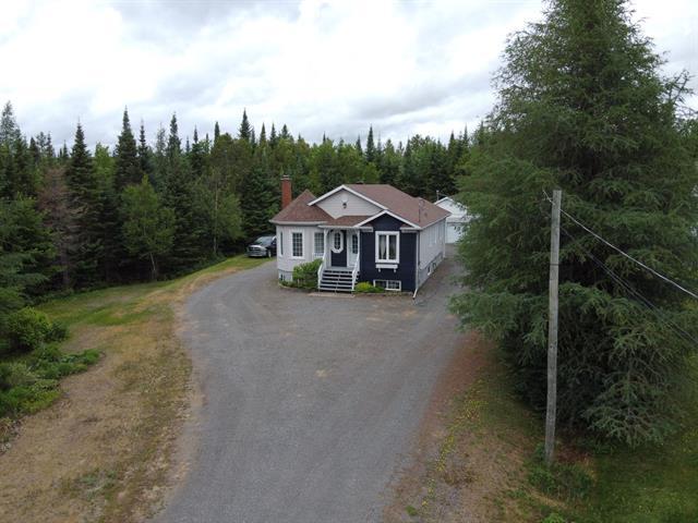 House for sale in Saint-Faustin/Lac-Carré, Laurentides, 40, Rue des Villageois, 18774947 - Centris.ca