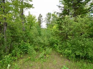 Terrain à vendre à Entrelacs, Lanaudière, Chemin d'Entrelacs, 11514210 - Centris.ca