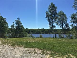 Lot for sale in Senneterre - Paroisse, Abitibi-Témiscamingue, 108, Chemin du Domaine-de-la-Montagne, 27503127 - Centris.ca