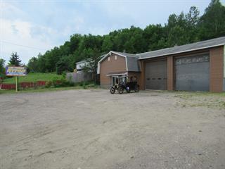 Maison à vendre à Mont-Laurier, Laurentides, 4941, Chemin de la Lièvre Nord, 26707850 - Centris.ca