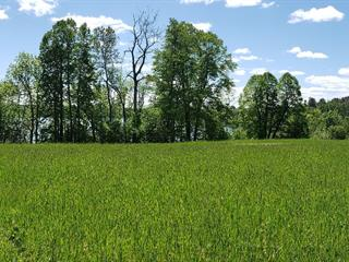 Lot for sale in Gracefield, Outaouais, Chemin de Blue Sea, 16145316 - Centris.ca