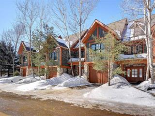 Condo / Apartment for rent in Mont-Tremblant, Laurentides, 142, Chemin des Sous-Bois, apt. 2, 28526663 - Centris.ca