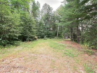 Terrain à vendre à Cayamant, Outaouais, 303, Chemin  Monette, 17809799 - Centris.ca