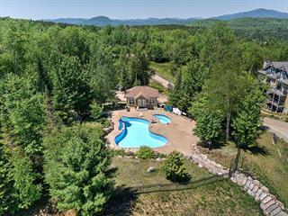 House for sale in Saint-Faustin/Lac-Carré, Laurentides, 32, Chemin du Mont-Blanc, 9917095 - Centris.ca