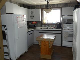 House for sale in La Sarre, Abitibi-Témiscamingue, 500, 2e Rue Est, 27201919 - Centris.ca